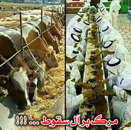 مرگ بر آل سقوط !!!