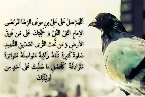 ولادت آقا علی بن موسی الرضا (ع) بر تمام شیعیان مبارک باد...