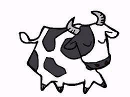 فواید گاو بودن
